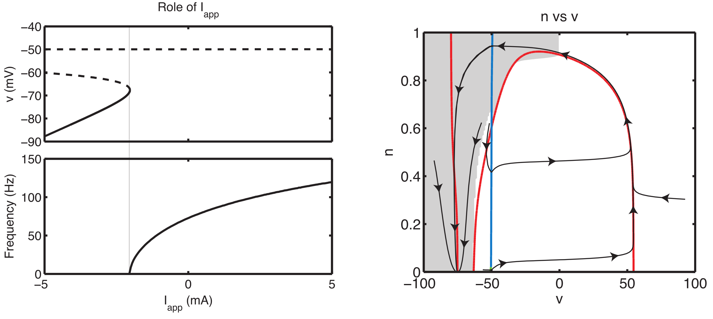 Dynamical systems analysis of action potential model